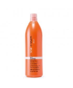 Inebrya Dry-T Shampoo 1000ml