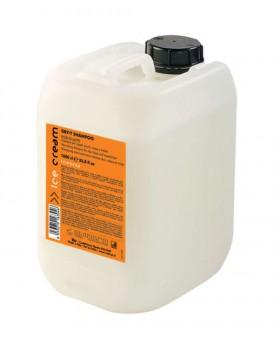 Inebrya Dry-T Shampoo 10Ltr